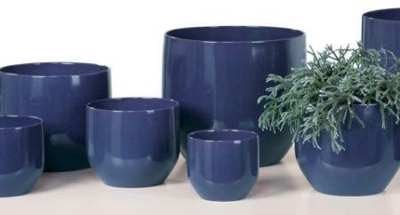 Blumentopf blau pure blue for Blaue blumentopfe