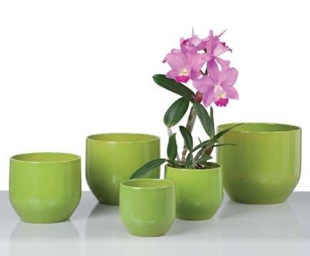 scheurich blument pfe pure green. Black Bedroom Furniture Sets. Home Design Ideas