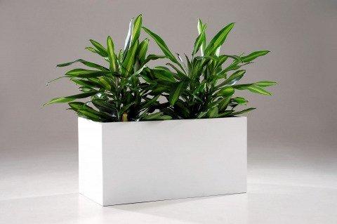pflanztrog maxi fiberglas wei hochglanz kaufen im onlineshop. Black Bedroom Furniture Sets. Home Design Ideas