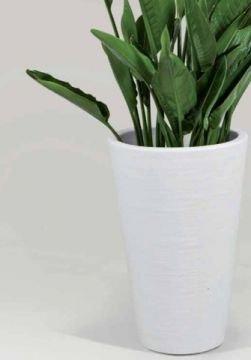 vase hoch f r blumen in zwei farbvariationen nur hier jetzt zu kaufen. Black Bedroom Furniture Sets. Home Design Ideas