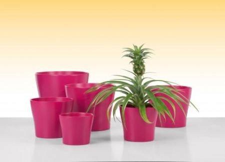 bertopf rubin in pink aus sch ner keramik f r innen und au en hier online kaufen. Black Bedroom Furniture Sets. Home Design Ideas