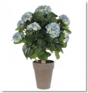 Blumentopf Outlet Pflanzkübel Sale Pflanzgefäß Angebote